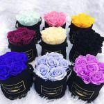 Ý nghĩa các loại hoa hồng - nên tặng hoa hồng màu nào?